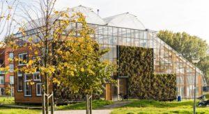 CHIBB-House-Rotterdam-Greenhouse-Karen-Steenwinkel-1-889x486